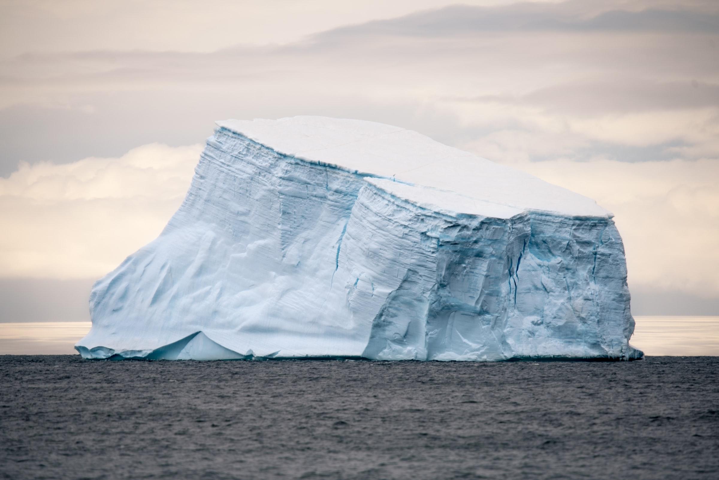 Distributor oversight: the hidden part of the iceberg